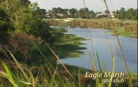 JungleTV Q1 2010