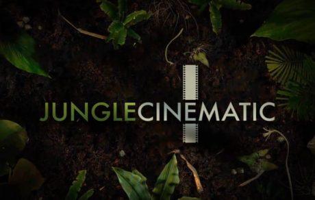 JungleCinematic General DEMO DEC16